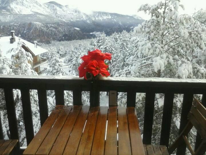 Bonito apart montaña..tranquilo...en plena natura.