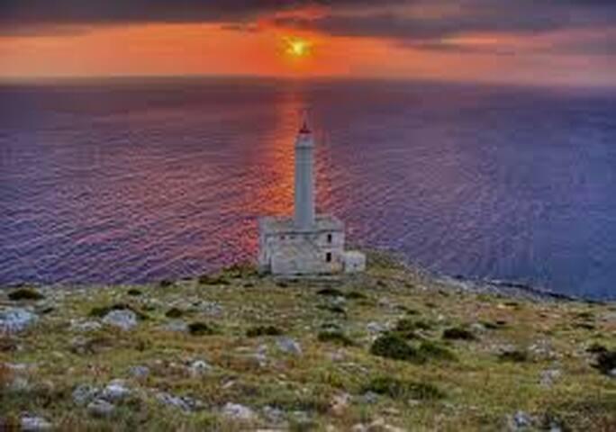Faro della Palascia