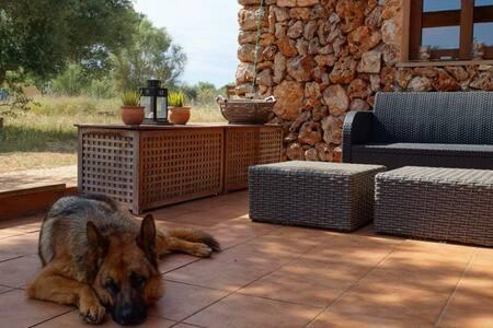 """Rural property """"Chez Bea"""" for one person + pet - Sineu - Dům"""