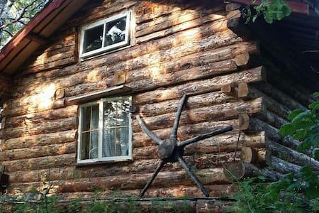 Naarismaa little house - Metsaküla