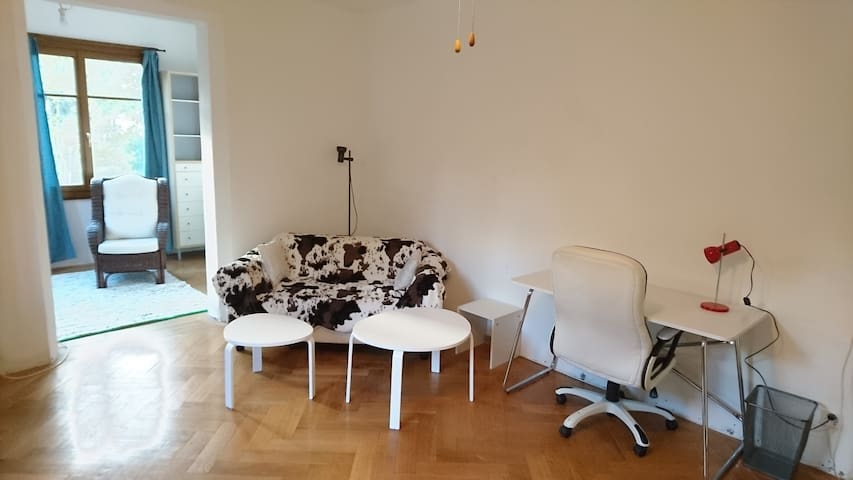 Very nice room in a flat near the center - Petit-Lancy - Apartamento