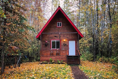 Coho Cabin: Walking Distance to Downtown!