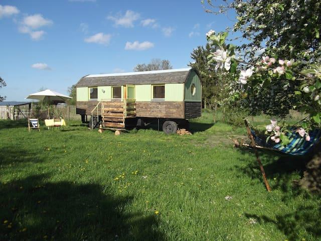 Bauwagen im Obstgarten