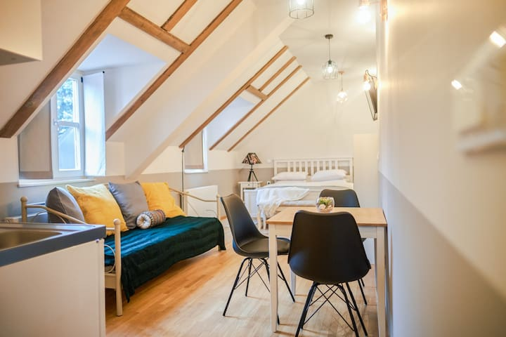 New apartment in old town