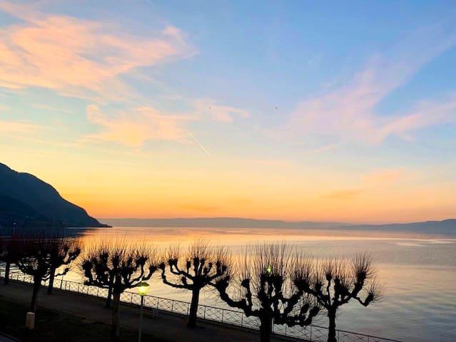 Bel appartement avec vue directe Lac Léman/Suisse
