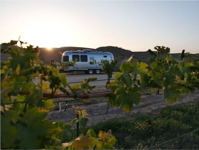 Airstream Vineyard Retreat near Paso Robles