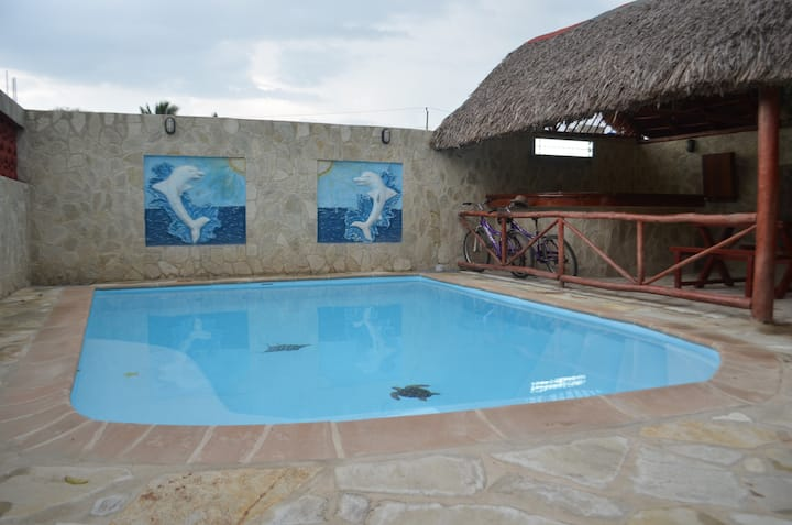 Dolphins House
