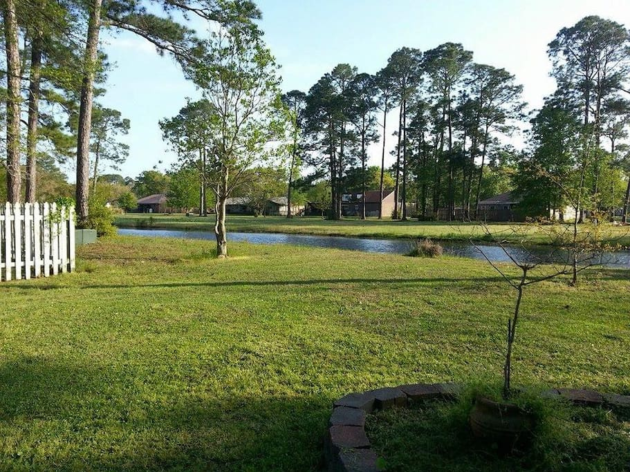 The back yard. bring your fishing pole.