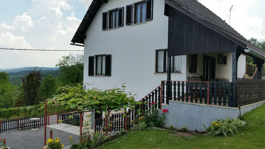 Canyon view House Ante Špoljarić 2 - Poljanak - Appartement