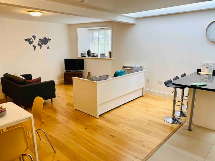 Large one-bedroom apartment close to Hampton Court