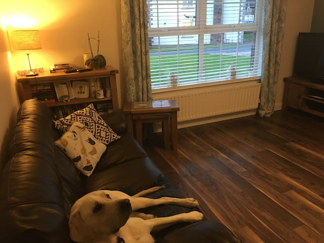 Beautiful Belfast home 3 bed semi detached (room)