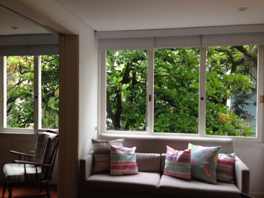 The main room  windows open to the streets trees. Very small  and cute monkeys can often be seen there in the morning