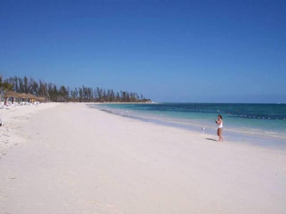Enjoy a swim, stroll or snorkel on the beach