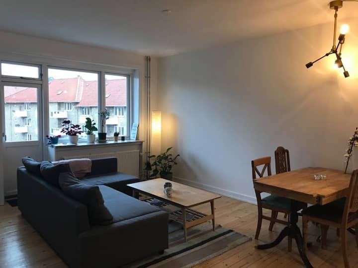 Two-floor newly renovated and spacious apartment