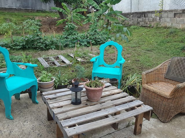 Urban Permaculture Oasis
