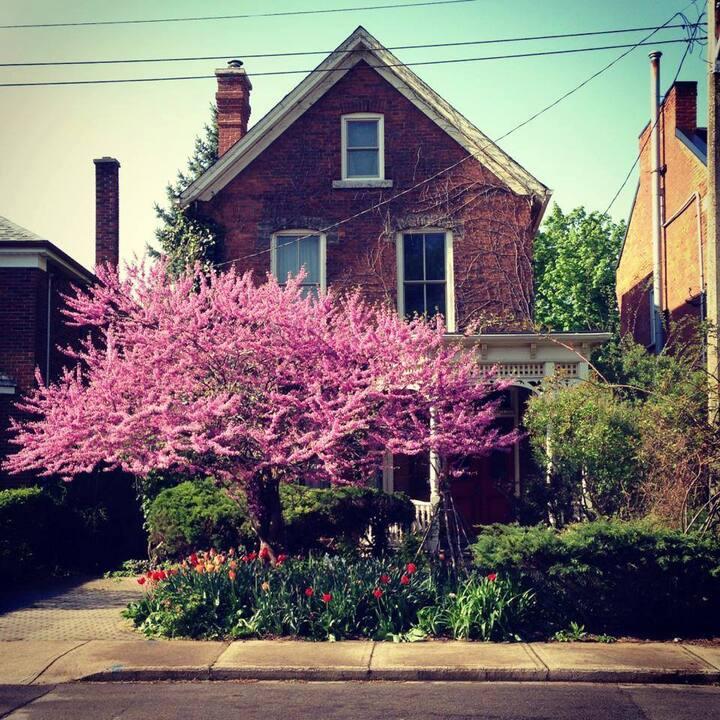 Cozy, artistic, Victorian home