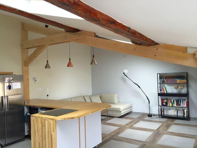 Beau duplex à 15 minutes du centre de Lyon - Saint-Cyr-au-Mont-d'Or - Apartamento
