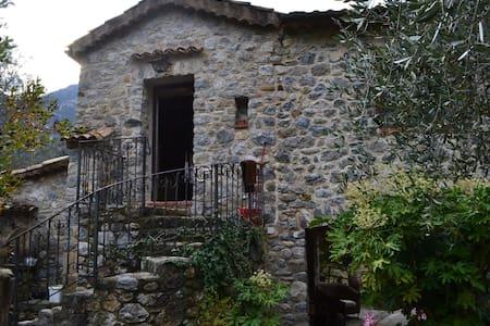 Agosto nell'entroterra ligure - Olivetta San Michele