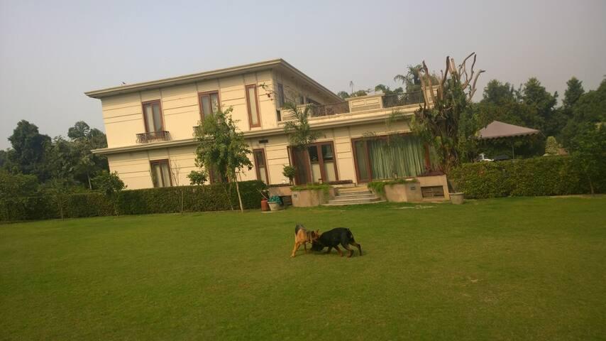 Onkar Villa Suite