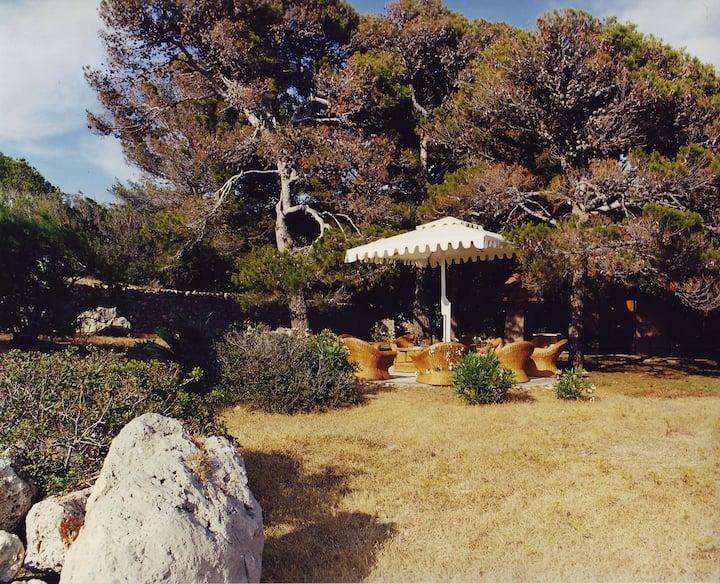 Giannutri Isola Esclusiva nel fantastico Tirreno