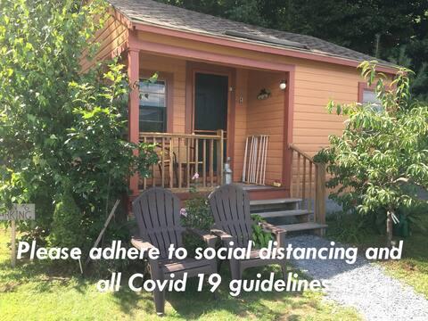 Cozy Knotty Pine Cabin