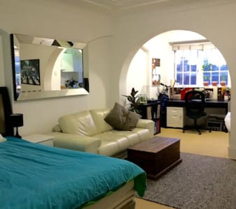 Bright studio apartment in Elizabeth Bay - Elizabeth Bay - 公寓