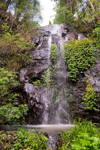Nimbin Waterfall Retreat - Nimbin - Serviced apartment