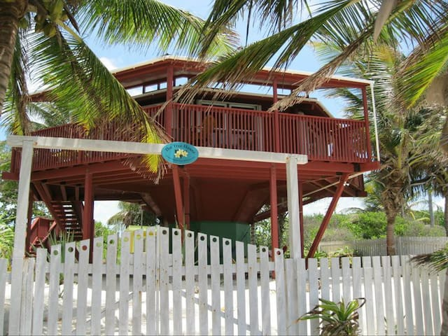 The Tree House, a Unique and Colorful Beach House - San Pedro - Huis