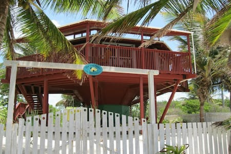 The Tree House, a Unique and Colorful Beach House