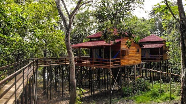Chalé em meio a floresta Amazônica