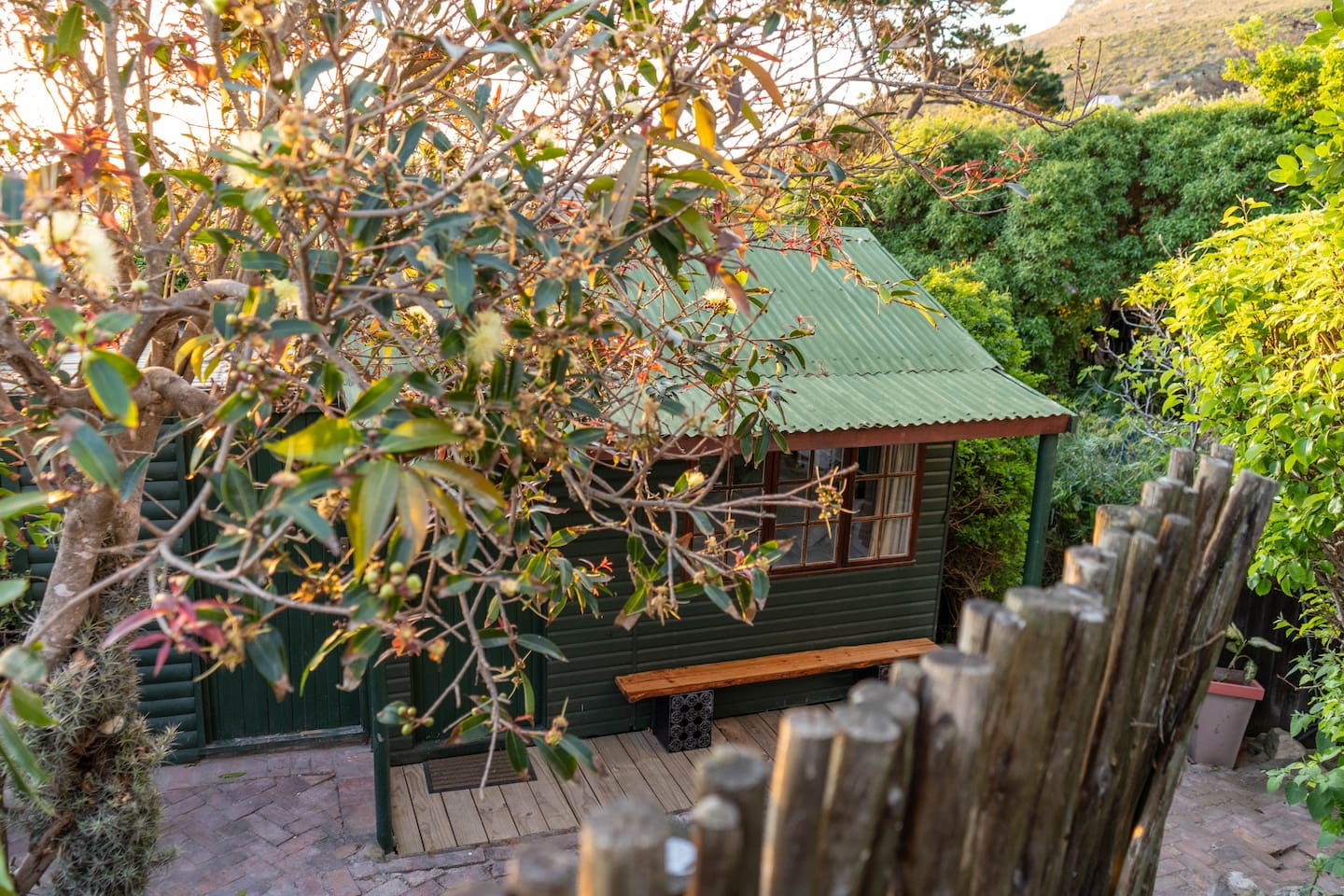 Quaint cottage surrounded by nature a stones throw away from the beach.