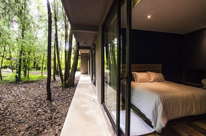 Hermosa Suite en medio del Bosque