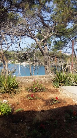 Little apartment only 30 meters from the sea - Mali Lošinj - Departamento