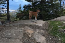 Hiking in May