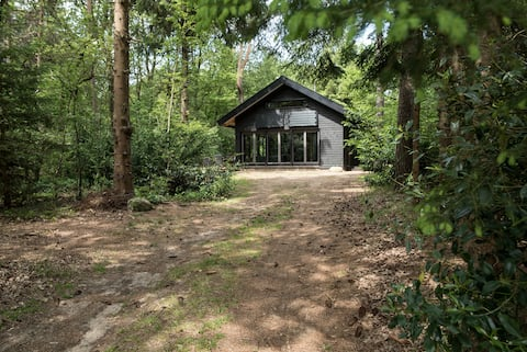 Holiday house Norg, Drenthe with large terrace in forest