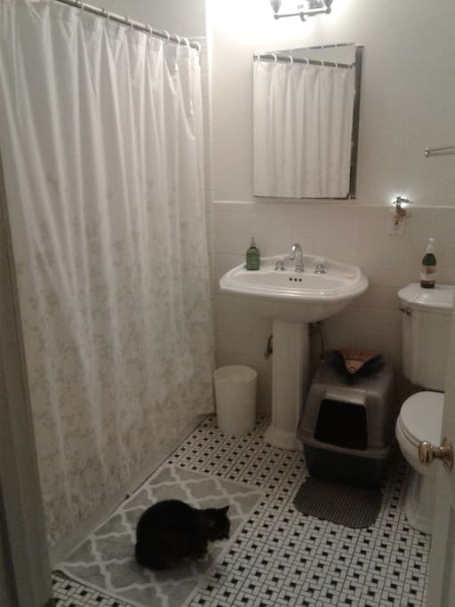 "Shared bathroom and ""Molly"""