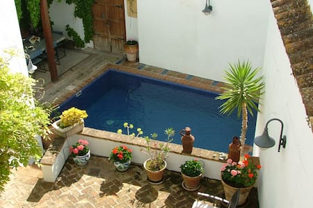 Luxury 5 bed period townhouse- all mod cons & pool - Dom