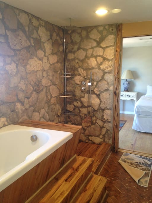 Soaker Tub, Rain Shower with Ipe wood shower floor.