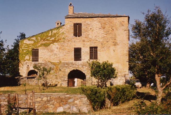 FOMIGACCIA - Cervione - House