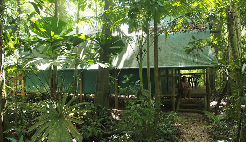 Daintree Crocodylus - Daintree Dorms
