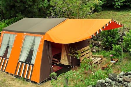 AbbyVille ^ Comfortable garden camp ^ Passionstrt. - Biscoitos