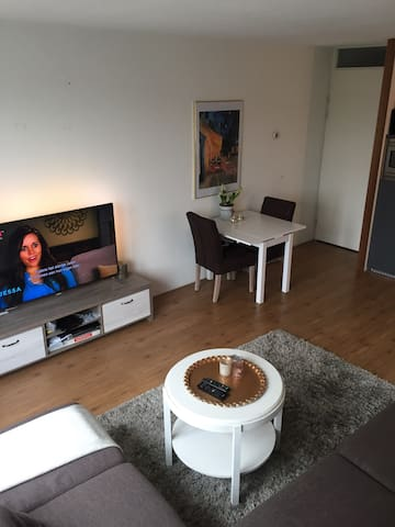 Cozy apartment near the city with private parking - Utrecht - Apartment