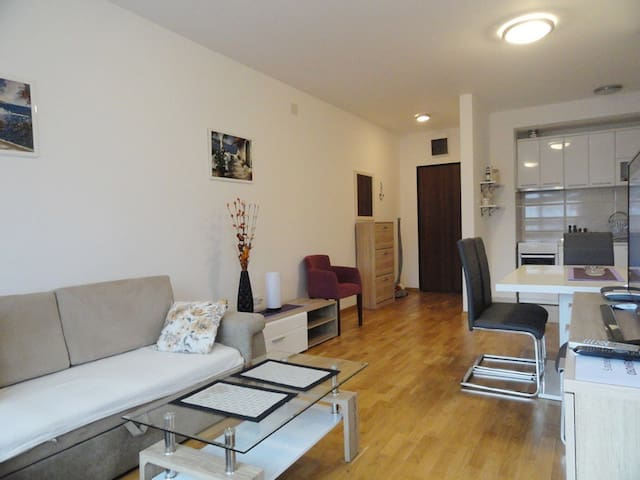 Modern & central located onebedroom apartment #25