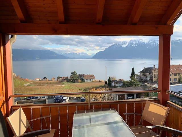 Montreux Vevey Lausanne : Cozy room in the Lavaux