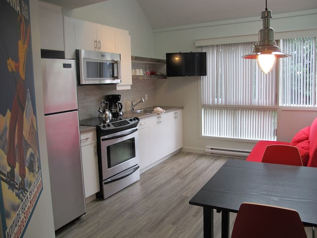 The P'tit condo by the ski hill in Mt-Tremblant - Mont-Tremblant - Apartmen