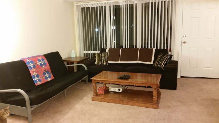 Central Apartment; Futon + Couch. - Hampton