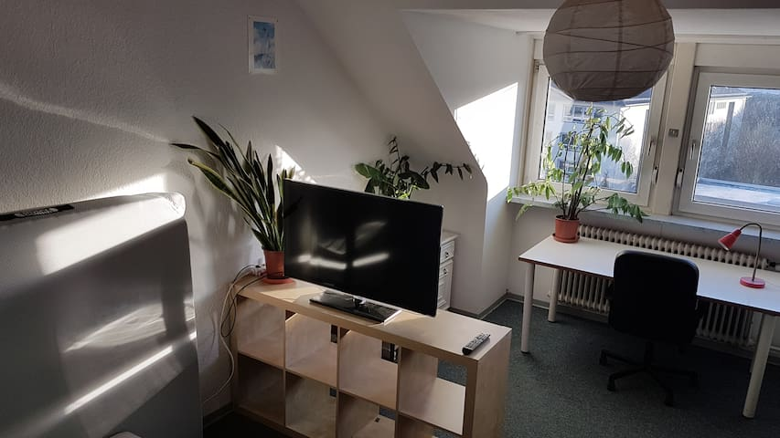 Cosy room in the city centre, close to university