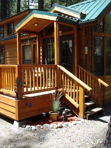 Mischievous Moose cabin