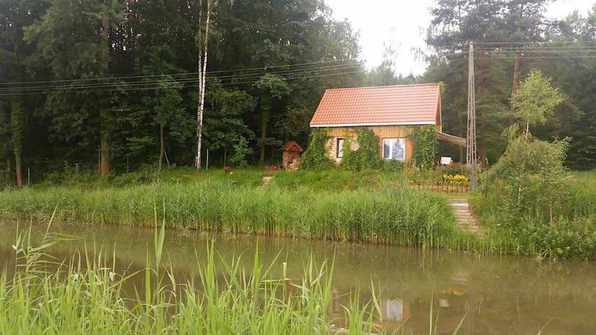 Rybaczówka - domek nad stawami i blisko lasu