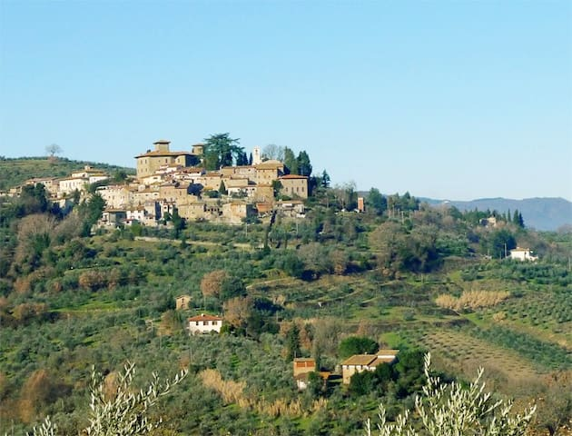Only 1.5 Km (0.9 Mi) there is Montegonzi, a nice (not touristic) small village dating back to 1191 A.D., with a lovely church, a good restaurant (Osteria di Montegonzi) with a magnificent terrace  overlooking the Chianti area, a coffee and food shop.